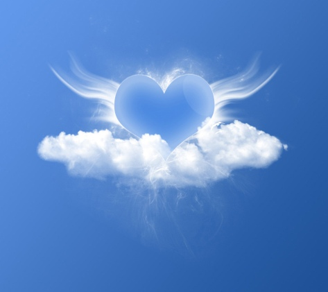 Wings Of Love~